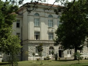 Gymnasium-Slobodan-vorher-1